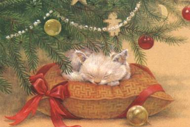 Cat under the Christmas